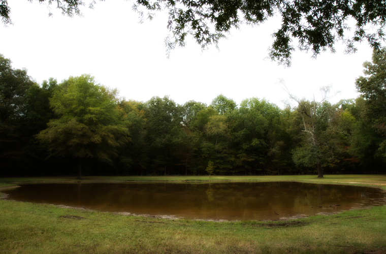 The Bloody Pond at Shiloh (Photo Credit: Civil War Trust)